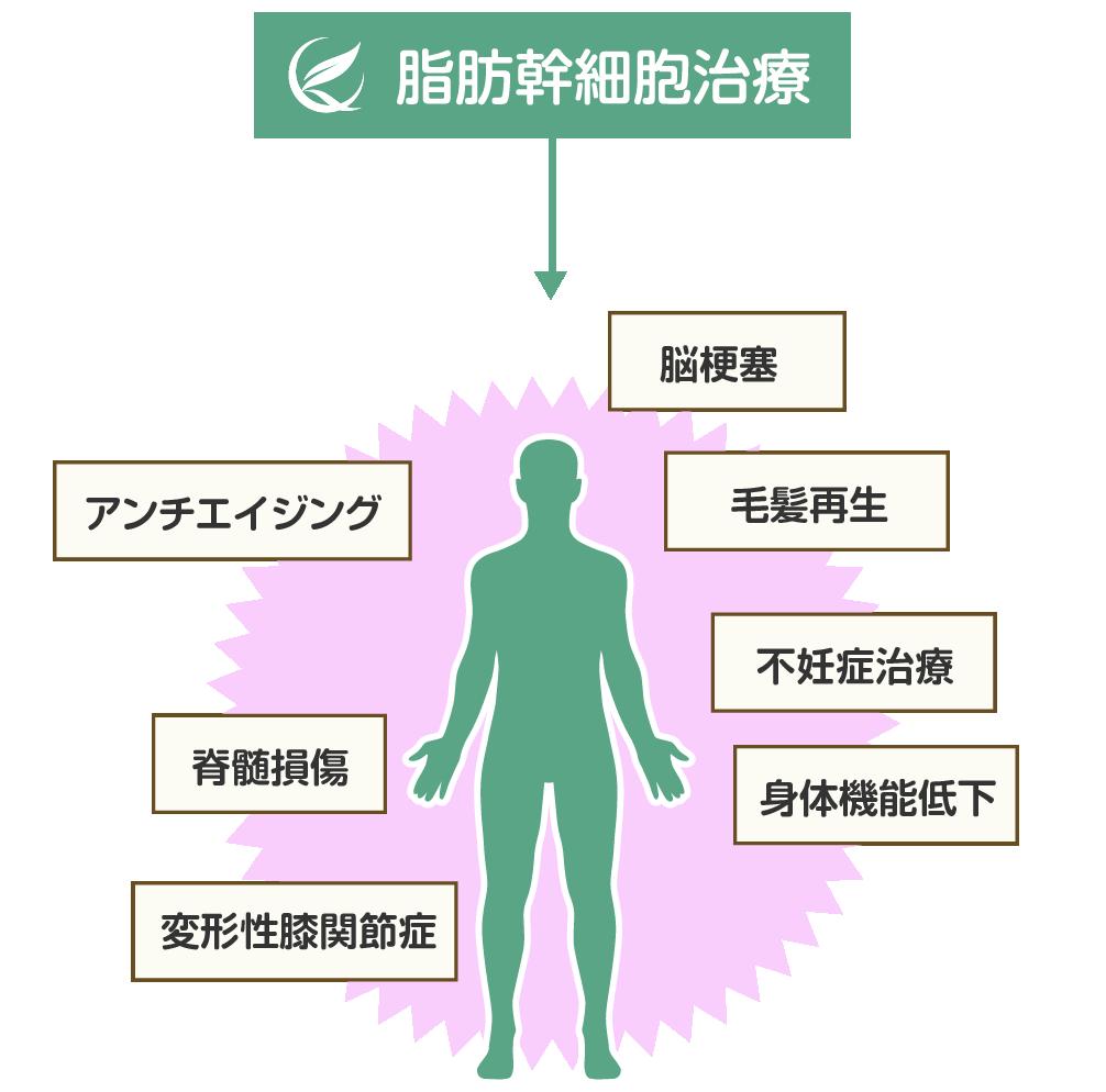 幹細胞治療 メニュー・料金 クロエクリニック青山